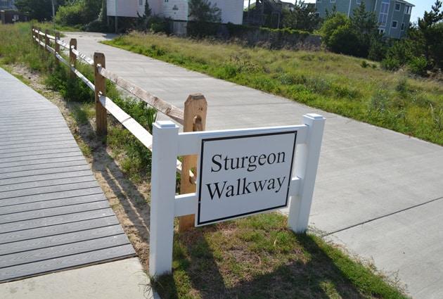sturgeon-access-1